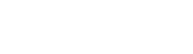Raptor Circus Logo